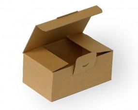 Warensendung Karton 305x215x125 mm, DIN A4